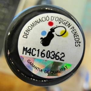 Logo_DOPenedes
