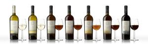 Todos los vinos-copas y botellas